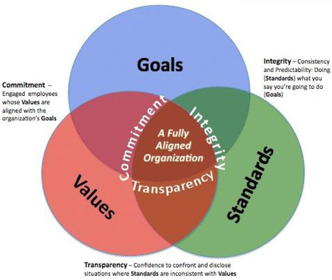Goals-Values-Standards-669